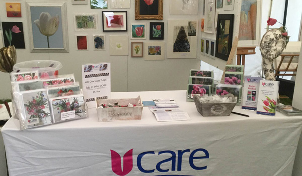 UCARE stall at Att in Action